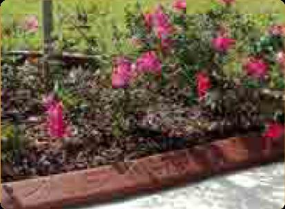 Spanish Texture garden border design
